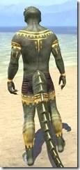 Bright-Throat Yolk Body Tattoo Argonian Male Rear