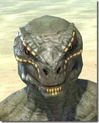 Bright-Throat Yolk Face Tattoo Argonian Male Front