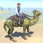 Camel-Lizard Steed