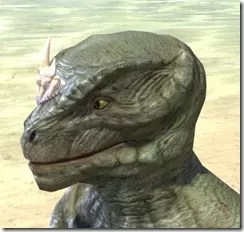 Dead-Water Tooth-and-Tusk Tiara Argonian Male Side