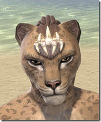 Dead-Water Tooth-and-Tusk Tiara Khajiit Female Front