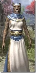 Priestess of Mara Khajiit Female Close Front