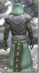 Pyandonean Homespun - Argonian Male Robe Close Rear