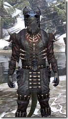 Coldsnap Heavy - Argonian Male Close Front