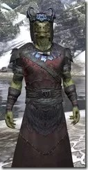 Coldsnap Light - Argonian Male Robe Close Front