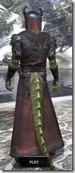 Coldsnap Light - Argonian Male Robe Rear