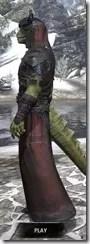 Coldsnap Light - Argonian Male Robe Side