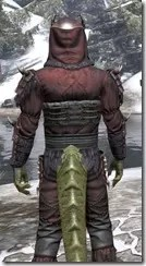 Coldsnap Medium - Argonian Male Close Rear