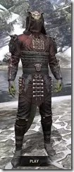Coldsnap Medium - Argonian Male Front