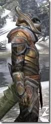 Dark Elf Dwarven - Argonian Male Close Side