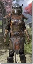 Dark Elf Dwarven - Khajiit Female Close Front