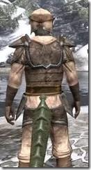Dark Elf Homespun - Argonian Male Shirt Close Rear