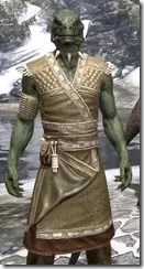 Deepwoods Pod-Singer Tunic Argonian Male Close Front