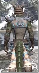 Dro-m'Athra Rawhide - Argonian Male Close Rear