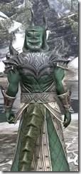 Ebonheart Pact Homespun - Argonian Male Robe Close Rear