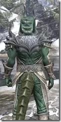 Ebonheart Pact Homespun - Argonian Male Shirt Close Rear