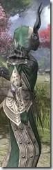 Ebonheart Pact Homespun - Khajiit Female Robe Close Side