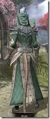 Ebonheart Pact Homespun - Khajiit Female Robe Rear
