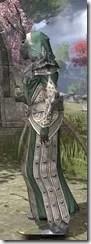 Ebonheart Pact Homespun - Khajiit Female Robe Side