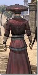 Honor Guard Ancestor Silk - Male Robe Close Rear