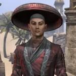 Honor Guard Ancestor Silk