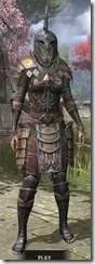 Imperial Dwarven - Khajiit Female Front