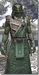 Imperial Homespun - Argonian Male Robe Close Front