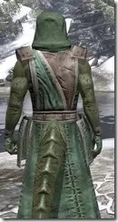 Imperial Homespun - Argonian Male Robe Close Rear
