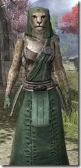 Imperial Homespun - Khajiit Female Robe Close Front