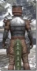 Imperial Steel - Argonian Male Close Rear