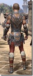 Lyris Titanborn - Male Rear