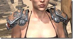 Lyris Titanborn's Pauldrons - Female Front