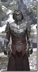 Meridian Light - Argonian Male Robe Close Front