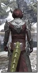 Meridian Light - Argonian Male Robe Close Rear
