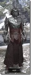 Meridian Light - Argonian Male Robe Front