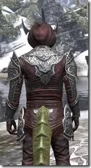 Meridian Light - Argonian Male Shirt Close Rear