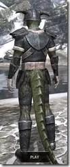 Nord Iron - Argonian Male Rear