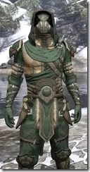 Outlaw Homespun - Argonian Male Robe Close Front