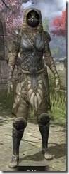Outlaw Iron - Khajiit Female Front