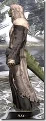 Prophet - Argonian Male Side