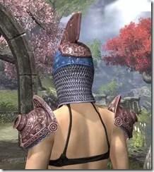 Stonekeeper - Dyed Rear