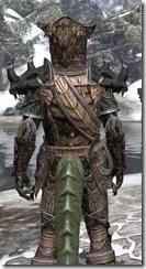 Wood Elf Dwarven - Argonian Male Close Rear