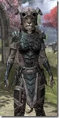 Wood Elf Orichalc - Khajiit Female Close Front