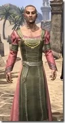 Bardic Tavern Singer's Dress Male Close Front