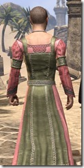 Bardic Tavern Singer's Dress Male Close Rear