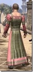 Bardic Tavern Singer's Dress Male Rear