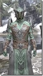 Divine Prosecution Light - Argonian Male Robe Close Front