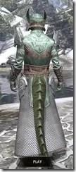 Divine Prosecution Light - Argonian Male Robe Rear