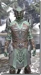 Divine Prosecution Light - Argonian Male Shirt Close Front