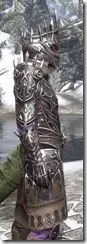 Stormlord - Argonian Male Close Side